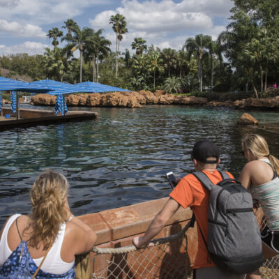 Bystanders watching dolphin pool